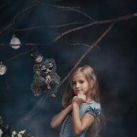 ФП Алиса в стране чудес :: Дарья Сбитнева