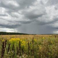 Дождь идёт :: Владимир Иванов
