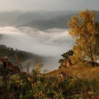 Туманная река. :: Марина Фомина.