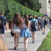 куда уходит лето :: Олег Лукьянов