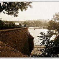 Река Висла. :: Galina Belugina