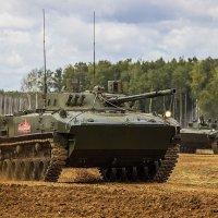Красная армия всех сильней! :: Владимир