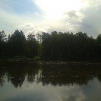 Река Кузьминка :: Сапсан