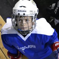 Хоккеист. :: elena oswald