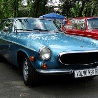 Volvo, парк Сокольники. :: Павел WoodHobby