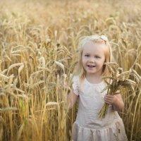 Пшеничный рай :: Tatiana Bobrikova