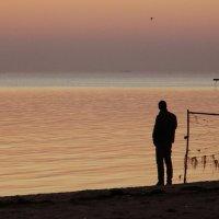 Вечернее наблюдение за полетом одинокой чайки :: Александр Бурилов