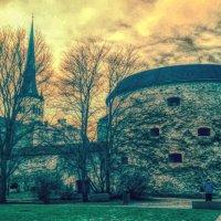 Эстония Таллин! :: Натали Пам