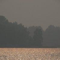 закат в дымке :: Alla Swan