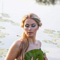 Русалка :: Алена Рябошапко