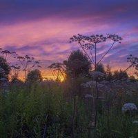 Летние закаты :: Наталья Лакомова