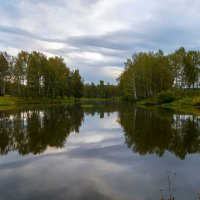Пасмурное утро :: Владимир Деньгуб
