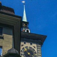 Часовая башня в Берне :: Tatiana Poliakova