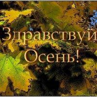 С первым осенним днём, дорогие друзья!. :: Нина Корешкова