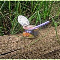 Завтрак туриста :: muh5257