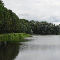 Как будто в лодке я плыву в зелёном мире :: Александр Буянов