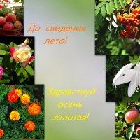 Встречайте осень!!! :: Тамара (st.tamara)
