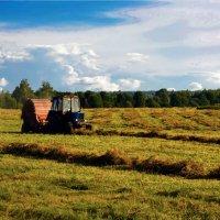 Село на сеноуборке. :: Юрий