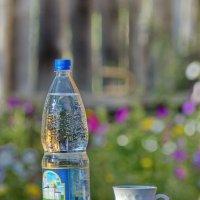 Лето в деревне. Как пить хочется! :: Михаил Полыгалов