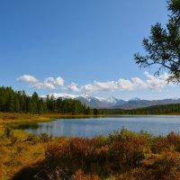 Озеро Киделю. :: Валерий Медведев
