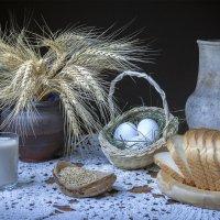 Колоски пшеницы... :: Ольга Дядченко