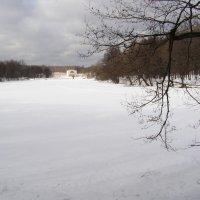 Парк Кузьминки пруд :: Анна Воробьева