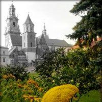 Замок Вавель :: Galina Belugina