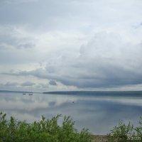 Вот такая погода,но и она прекрасна в эти моменты :: Лидия (naum.lidiya)