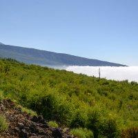 Те́йде (исп. Teide) — вулкан на острове Тенерифе, :: Viktor Schwindt