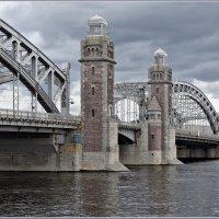 Мост Петра Великого (Большеохтинский мост). :: Николай Панов