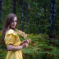 Осень :: Сергей Добрыднев