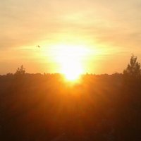 Закат над городом :: Юлия Закопайло