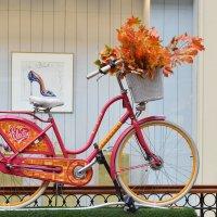 Велосипед дамский, осенний :: Татьяна Помогалова