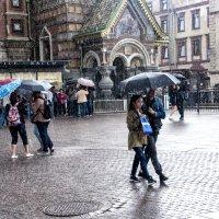 дождик :: павел бритшев
