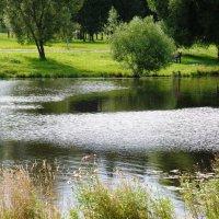 Муринский ручей. :: Марина Харченкова