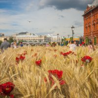 Московское лето :: Константин Поляков