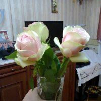 Ваза с розами в интерьере 2 :: Андрей