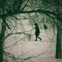 Ночной парк. Одинокий прохожий. :: Михаил Николаев