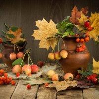 Осенний микс :: Татьяна Беляева