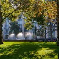 Осень в городе :: Эдуард Цветков