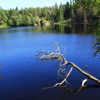 Озеро  на Валааме. :: Иван
