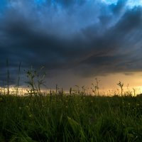 В ожидании дождя :: Андрей Баскевич