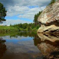 Ёжик у ручья... :: Нэля Лысенко