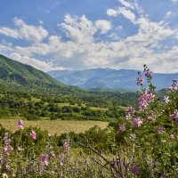 В горах Ала-Тау :: Сергей Рычков