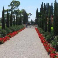 Бахайские сады в Акко. :: Валерьян