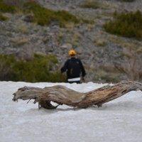...то ли дрова то ли голова :: ДенKZ341 ***