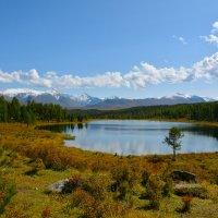 Озеро Киделю на исходе лета. :: Валерий Медведев