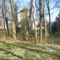 Регенсбург,март :: tgtyjdrf