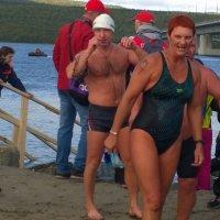 заплыв моржей через кольский залив. :: сергей гнусов