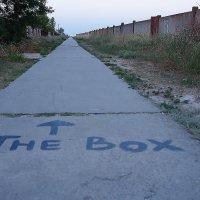 The Box - пляж эмоций. К эмоциям дорога... :: Александр Резуненко